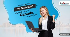 Canada Immigration Pathways For Tech Talent: Express Entry, PNPs, Work Permits & More